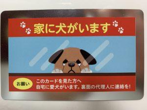 家に犬がいますカード 石田税理士事務所